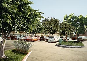 """""""greened"""" parking lot (image credit: USC Department of Geography)"""