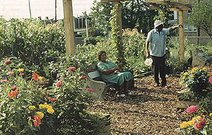 A community garden is a place for socializing as well as for growing food. (image credit: Alexander Garvin, Gayle Berens, and Christopher Leinberger. urban parks and open space)